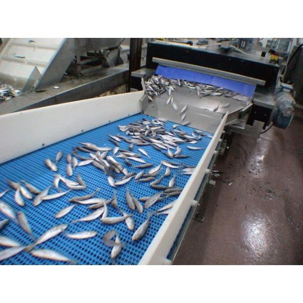 Στη Βιομηχανία Επεξεργασία Ψαριών Εφαρμογές